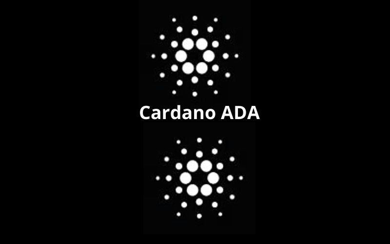 First Cardano Smart Contract Has been Run Successfully on Alonzo Testnet