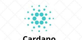 Cardano (ADA) Could Be a Top Five Cryptocurrency by 2021 –CEO of Messari