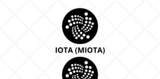 How Amazon Alexa Helps In Checking IOTA Wallet Balance