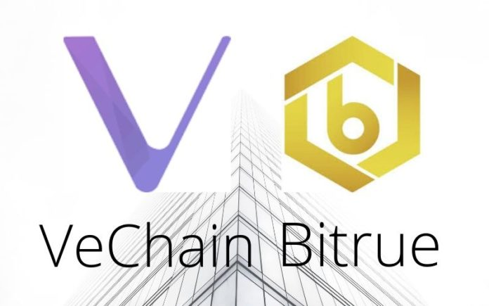 Bitrue Updates VeChain (VET) Wallet to Conform with the Upcoming Fork