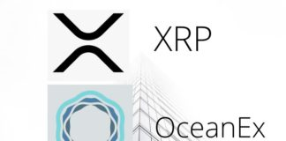 Ripple XRP against Tether (USDT) Perpetual Contract Trading Goes Live on OceanEx