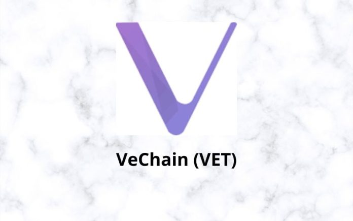 VeChain Price on the Cusp of Going Parabolic; VET is the Most Undervalued Crypto