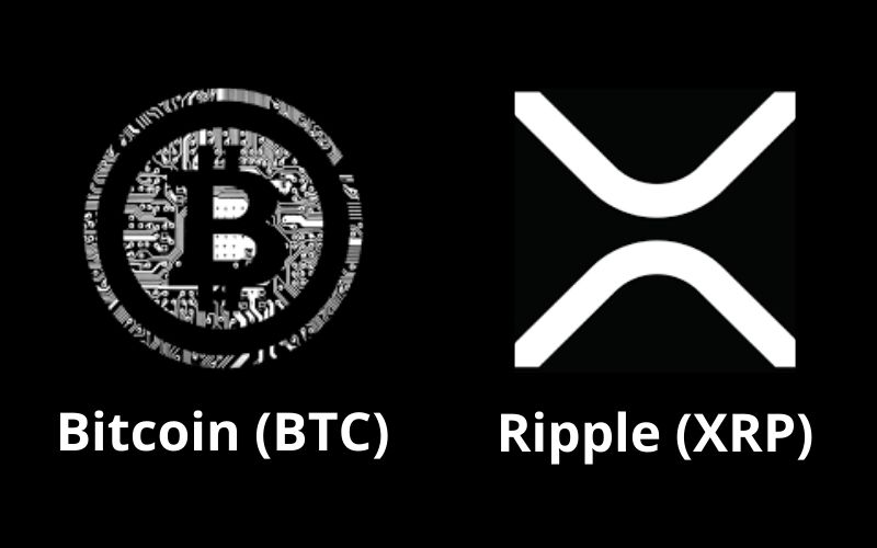 Credible Crypto Says Bitcoin and XRP Are Set For Price All-Time Highs, States New Timeline