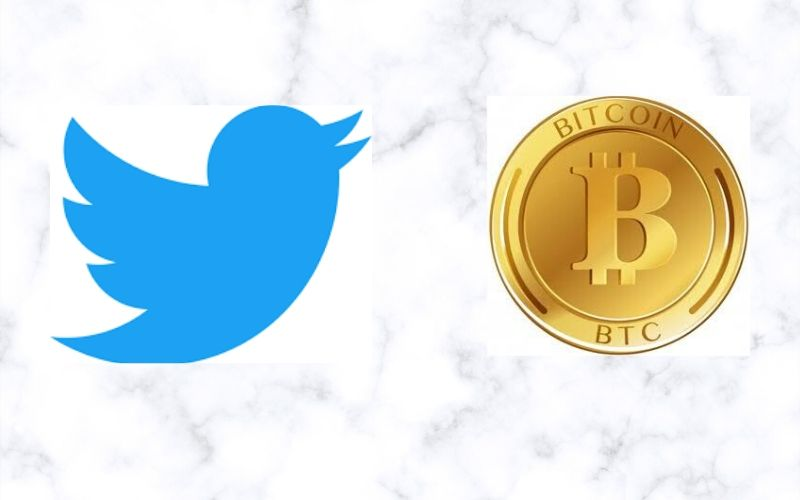 Elon Musk and CZ Binance Declare Their Supports for Jack Dorsey as Twitter CEO. Here is why