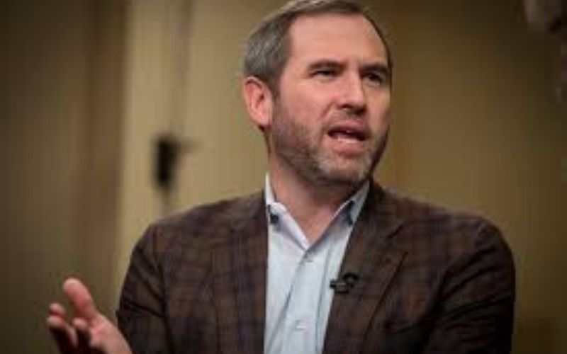 Even If XRP Is Declared a Security, Ripple Would Still Succeed –Brad Garlinghouse
