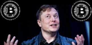 Elon Musk Just Sounded Positive about Bitcoin; Says BTC Is a Solid Internet Money