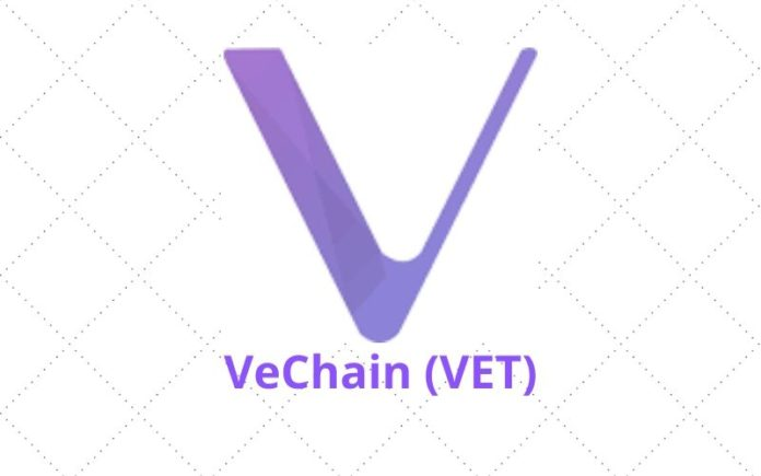Analyst: VeChain (VET) Has Formed Massively Bullish Cup and Handle Pattern, Could Surge Over 377%