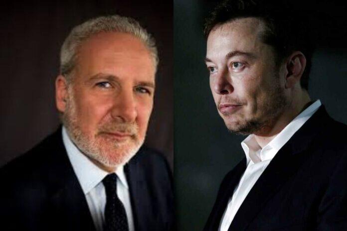 Elon Musk Calls Peter Schiff a Di*k after A Tweet about Tesla's Bitcoin Buy and Loss