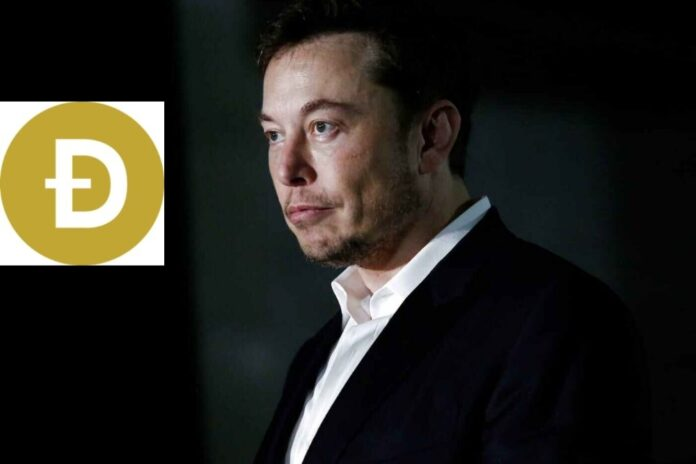Elon Musk Considers Adding Dogecoin (DOGE) As Tesla Payment Option