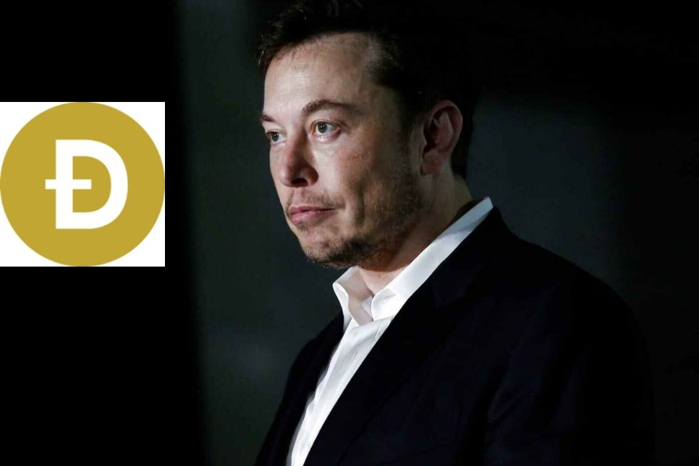 Elon Musk Approves a New Use Case for Dogecoin (DOGE)