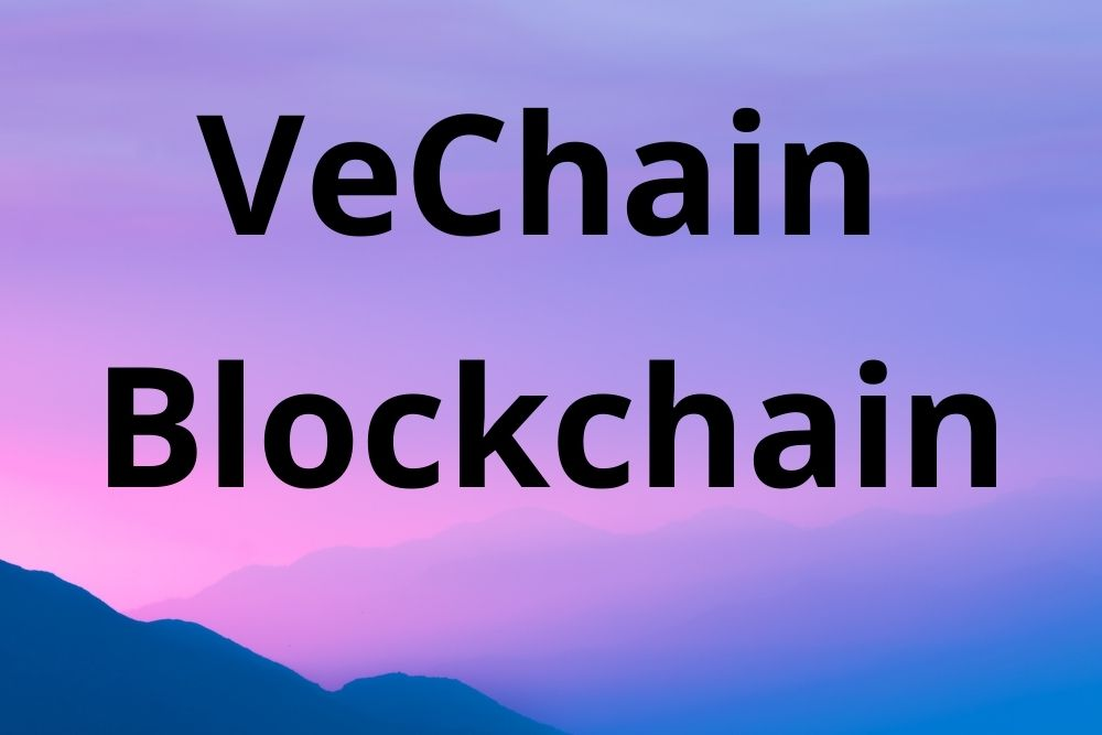 VeChain thor-request.py New Version Released with Fixed Bugs